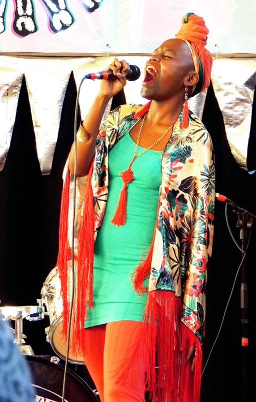Grrl Fest 2015 - Northcote Town Hall (Dinda Advena) 48